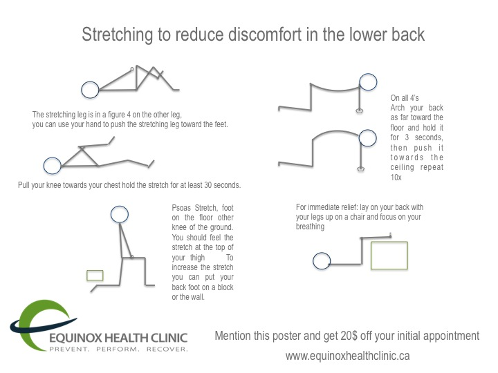 Lower Back- information strengthening/stretching | Equinox Health ...